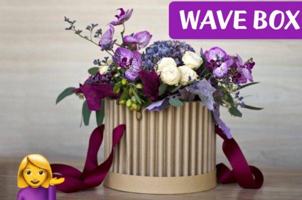 Novità! Wave Box!